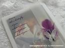 prozirna zahvalnica s perom u boji i leptirom