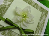 Pozivnica za vjenčanje Pozivnica u kutiji: Proljeće